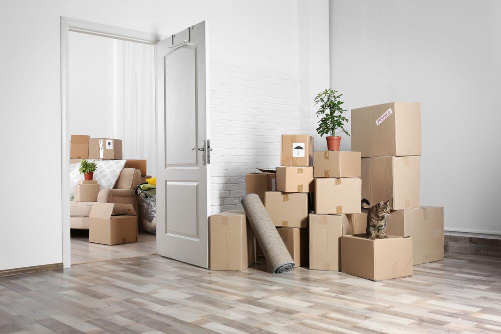 Verhuisbedrijf Eindhoven helpt bij particulier verhuizen